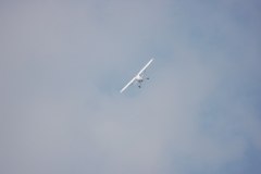 Monocoupe_Peter_089_resize